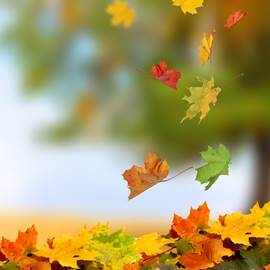 Fall Tips for Medical Weight Loss